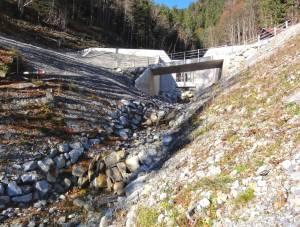 Verbauungen und Hochwasserschutz sind eine Herausforderung für die Ökologie.