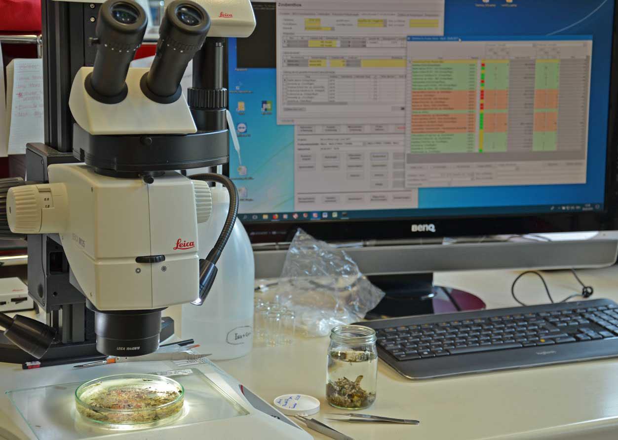 Biologische Datenbank BIS AquaPlus